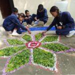 Rangoli - Diwali Celebration